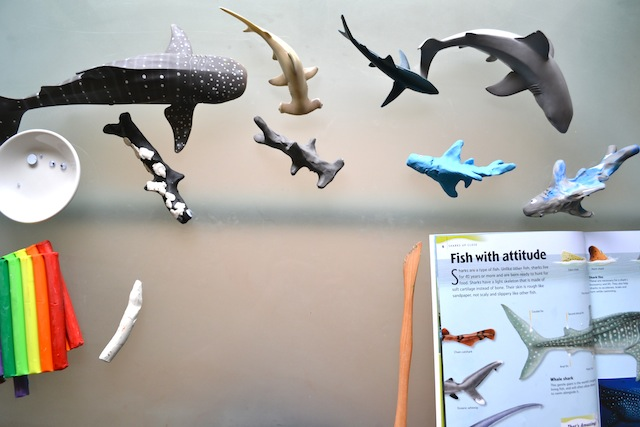 Making Shark Models (Photo from How We Montessori)