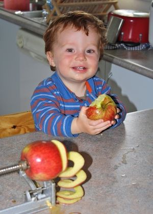 Ahhhh, applesauce making day!