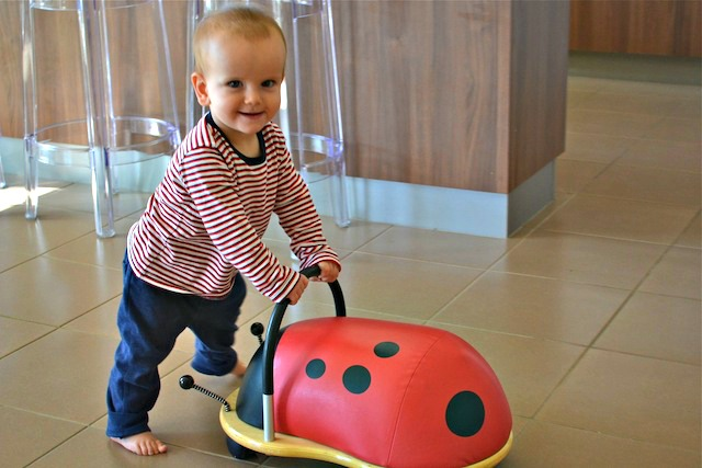 Otis walking with Wheely Bug - 12 months