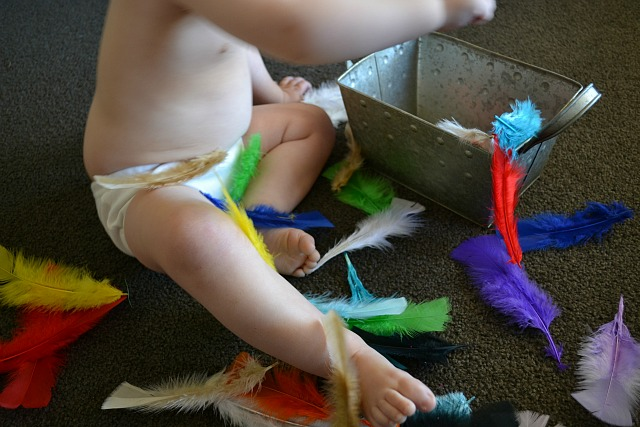 Feathers for play