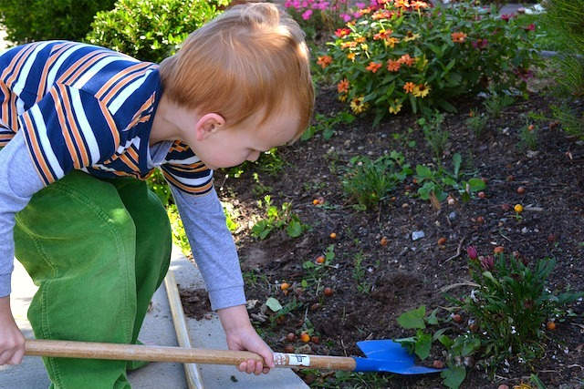 Caspar with shovel