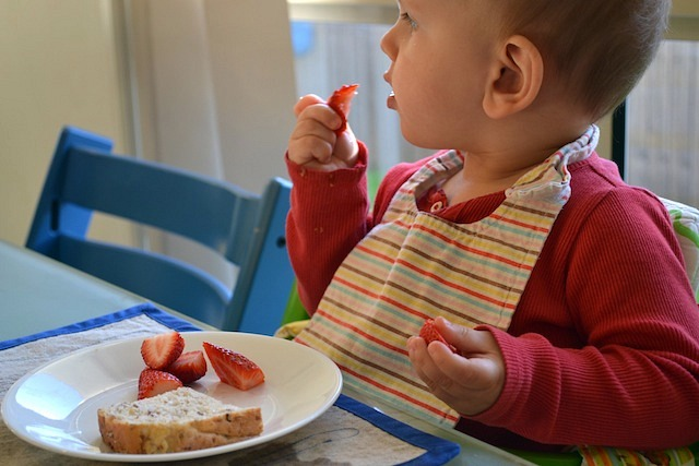 Eating the rest of his breakfast, bread and strawberries