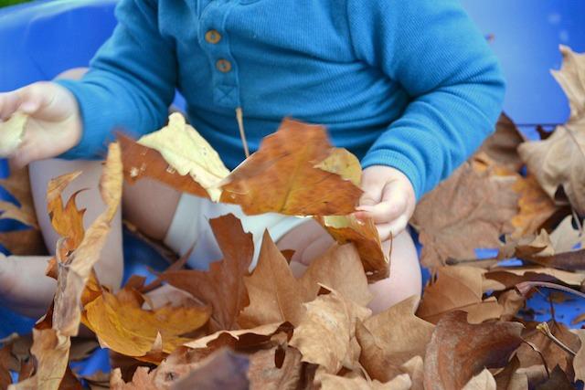 Otis holding a leaf