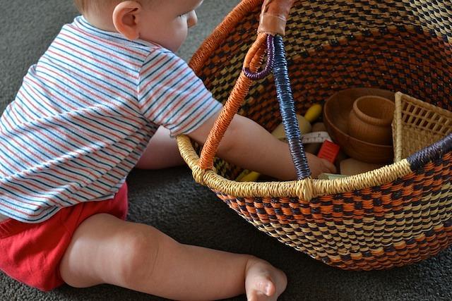 Otis with basket