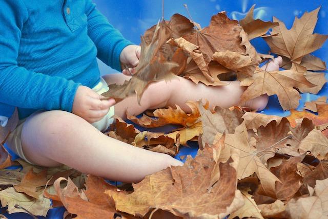 Otis with leaves