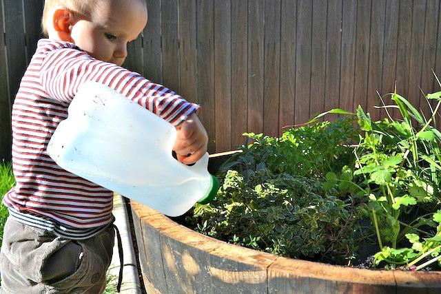 Otis watering